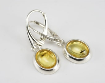 Handmade Baltic Amber Sterling Silver Earrings Jewelry With Fossil GNATS Inclusions