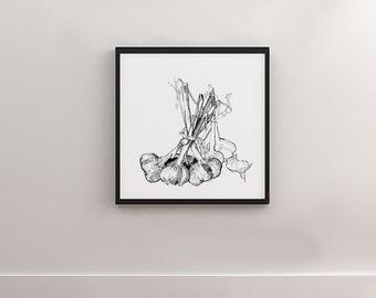 Garlic digital art print