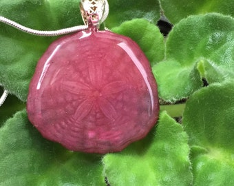 Rose Colored Sand dollar Pendant and Necklace
