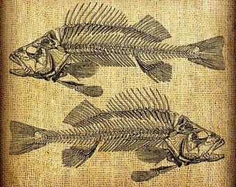 Fish Skeleton Bones Twins Collage Vintage Digital Image Transfer Download 300 dpi for Pillows Totes Bags Napkins Towels