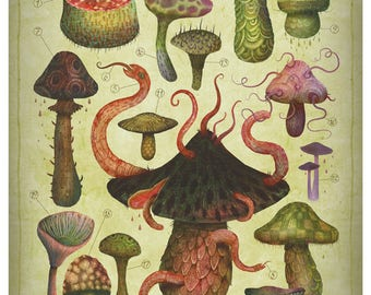 The Fungus Kingdom - A4 art print