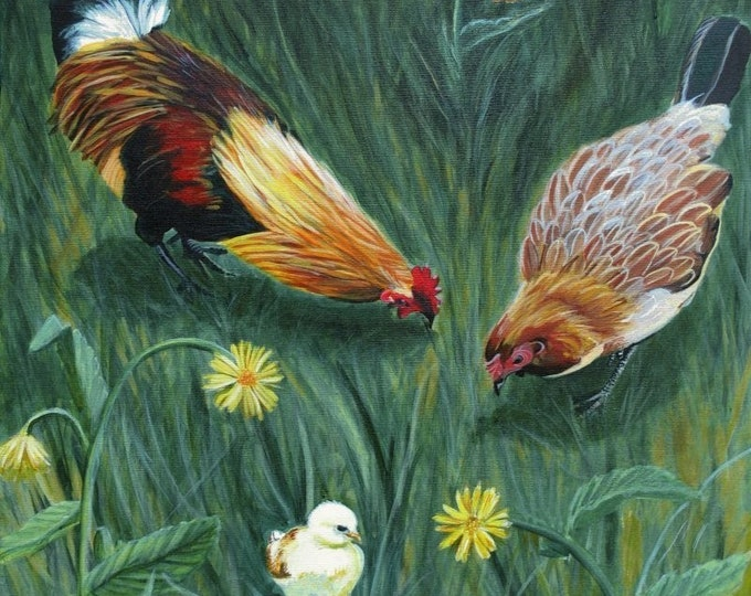 Chicken art print, rooster print, rooster art, chicken art, chicken art prints, farmhouse, farm art, baby chicks, kauai roosters, kitchen