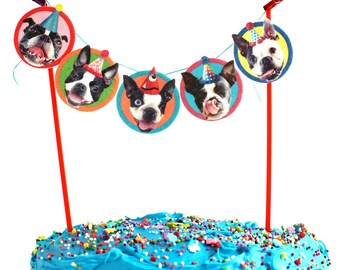 Boston Terrier Birthday Cake Garland - party decoration banner for Bostie lovers