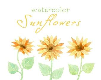 Watercolor Flowers, Sunflowers, Digital Clipart, Watercolor Clip Art