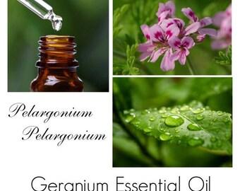 Geranium Oil, Geranium Essential Oil, Rose Geranium Essential Oil -- 100% Pure Authentic Geranium EO