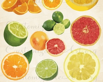 Citrus Fruit Clip Art Digital Fruits Sour Lemon Lime Oranges Grapefruits Scrapbook Clipart Images Graphics Embellishments Fruits Food Images