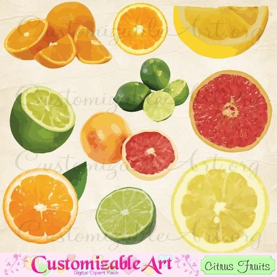 Citrus Fruit Clip Art Digital Fruits Sour Lemon Lime Oranges