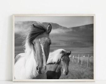 Horse Print, Horse Print Wall Art, Animal Prints, Horse Photography, Horse Printable, Black White Horse, Horse Decor, Animal Photography