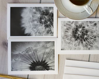 Set of 3 Dandelion Photo Note Cards, Macro Dandelion Photo Cards, Blank Note Cards, Any Occasion Cards, Gifts Under 25