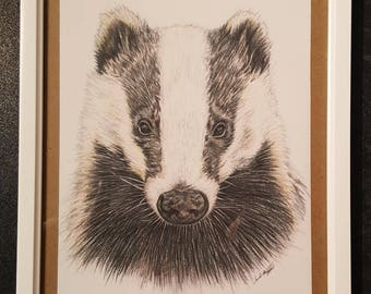Framed Badger illustration