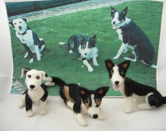 One needle felted Custom sculpture of your pet by a Scottish artist. - medium sized. Border Collie Art, Personalised Dog Art