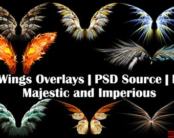 8 Wings Overlay Transparent, Wings Digital overlays, magic fairy wight wing, colorful wings, wings ClipArt, Wings Photo Overlays, Wings PSD