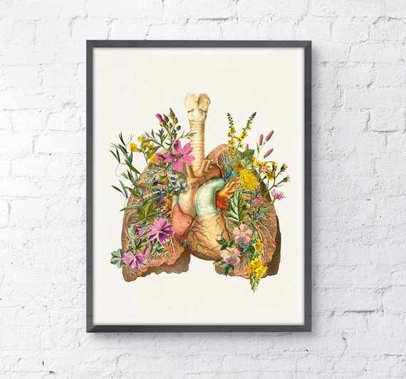 Lungs and heart with flowers Print wall art Doctors gift Human anatomy print Science student gift- Anatomy prints SKA099WA4