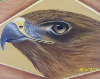 Red Tailed Hawk Hand Painted Plaque