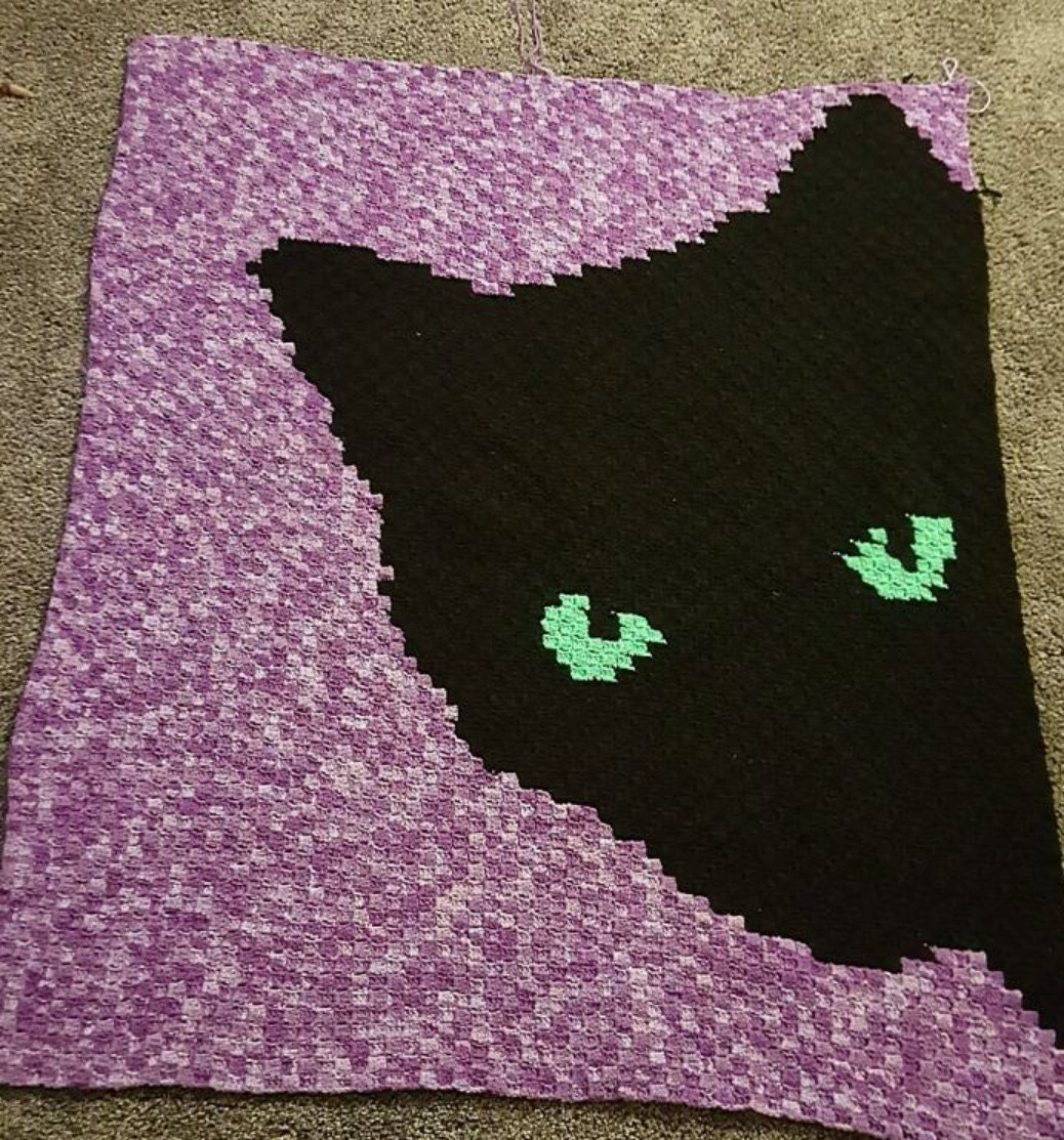 CAT EYES C2C Graph afghan pattern with written row by row