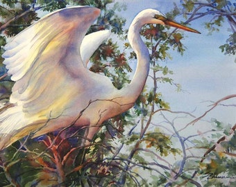 Great egret, white bird, wading bird, Louisiana watercolor print