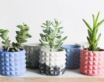 Concrete Planter, TRI-PLANTER, Hand Dyed Concrete, Desk Decor, Succulent Planter, Small Planter, Geometric Planter, Terrarium, Concrete Pot