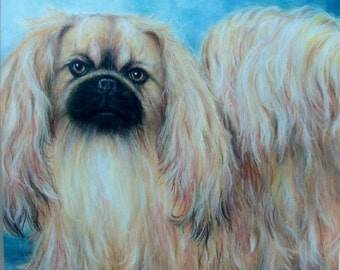 """SAMPLE of Fine Art in Soft Pastel, """"CHARLIE"""", Pekinese, 16 x 20, Commission your Pet Portrait today"""