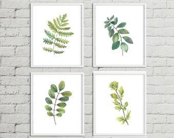Botanical Print Set, Set Of Botanical Prints,leaf Art, Fern Prints Art,