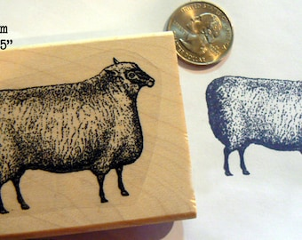 Sheep rubber stamp P53