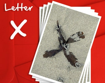 Alphabet Photography Letter X Choices, Alphabet Photography 6x4, 7x5 or 8x6 Prints