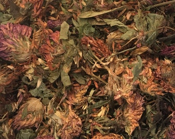 Red Clover Herb, Dried Whole Herb, Trifolium pretense