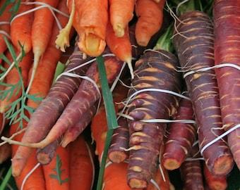 Organic Carrots - Fine Art Photograph
