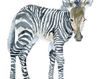 Zebra Watercolor Painting - 5 x 7 - Giclee Print Reproduction - Fine Art Print - African Animal Painting