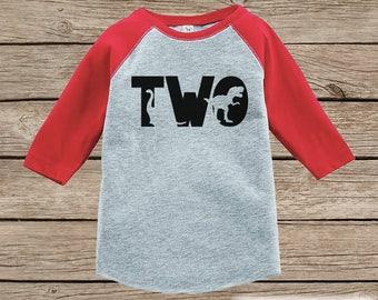 Dinosaur Birthday Shirt - Boys Second Birthday Dino Tshirt - Dino Birthday Shirt - Red Raglan Dinosaur 2nd Birthday Shirt - Dino Two Shirt
