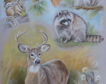 NATIVE FOREST ANIMALS Custom Wildlife Collage Original Pastel Drawing Illustration of Mammals Deer Raccoon Squirrels Rabbits Rodents