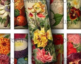 INSTANT DOWNLOAD Digital Art Images Collage Sheet - Vintage Flowers Illustrations - 1 x 3 Slides for Pendants - Magnets - Scrapbooking (M37)