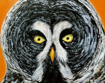 Giclee Print: OWL 8x8