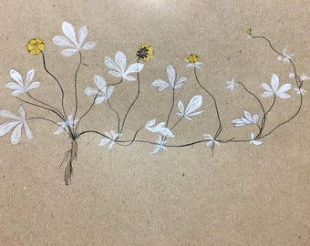 White Charcoal Botanical Drawing