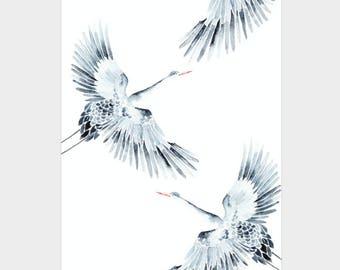 Mini Poster A5 - Cranes - Unique Design - SFA