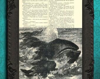 Whale art, whale print, whale decor, whale nursery - baby whale decor, whale digital paper, whale dictionary art print, greenland whale art