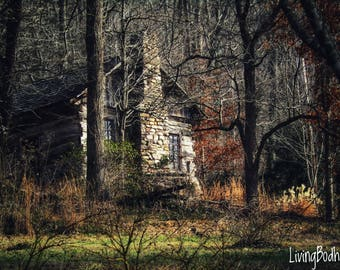 Cabin, Cabin Print, Cabin Photo, Country Photograph, Woods, Nature