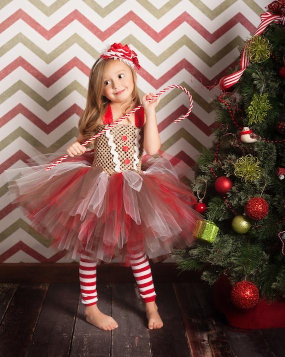 Gingerbread Girl Tutu Dress And Legwarmers Sz 0 5t