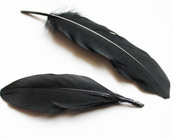 Dyed Black Goose Coquille Feathers 4-6″ | 25 pcs.