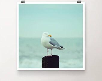 WatchTower - FineArt Print Nature Sea Ocean Seagull Bird Beach Summer Water Seaside