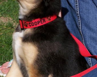 Personalized Dog Collar Embroidered Dog Collar with Name and Phone Number Custom Dog Collar