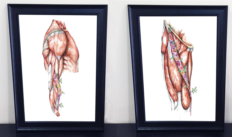 Medizinische Anatomie Kunst-Aquarell Blumen-PRINT Oberschenkel
