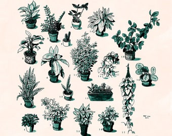 "Potted House Plants - 10x10"" Art Print"