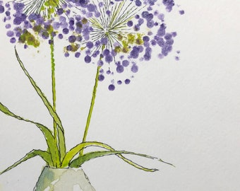 Allium in a Vase