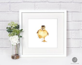 Dancing Duckling Drawing Framed Print Artwork Picture