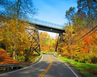 Train/Walking Bridge