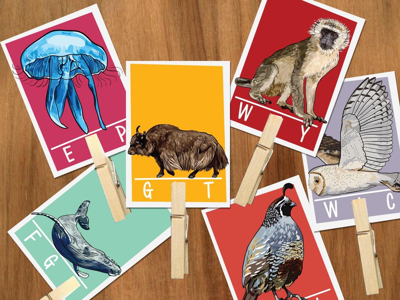 Animal Alphabet ending letter sound clip cards Preschool ABC