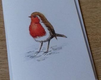 Robin blank greetings card
