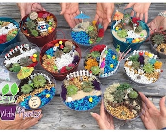 Fairy Garden Party Kit, Fairy Garden Kit, Fairy Garden Party, Fairy Garden Kits, Terrarium Kit, Succulent Fairy Garden kit