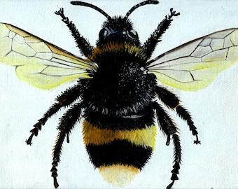 Honey Bee (PRINT)