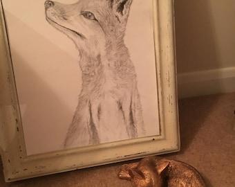 Fox Pencil Drawing Original